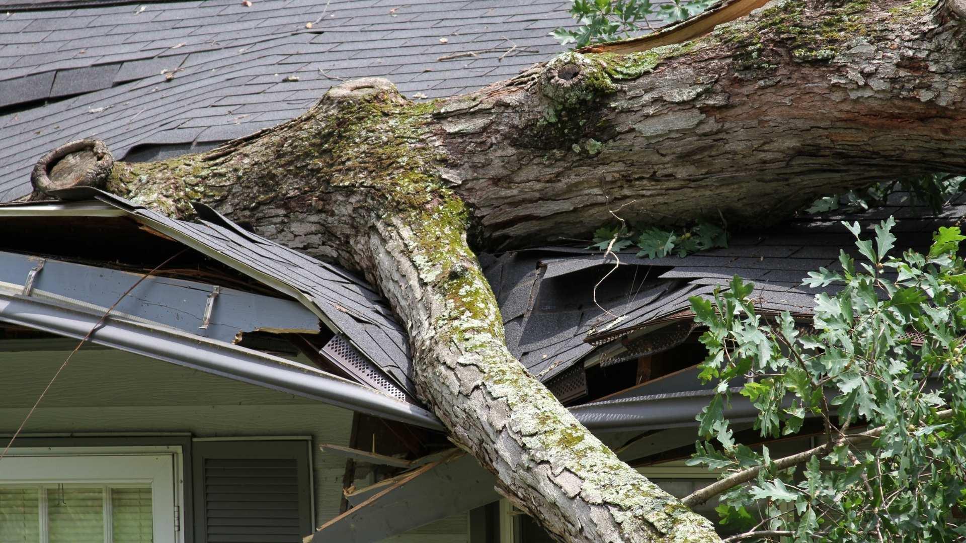 Residential Roof Repair in clayton, NC (1)